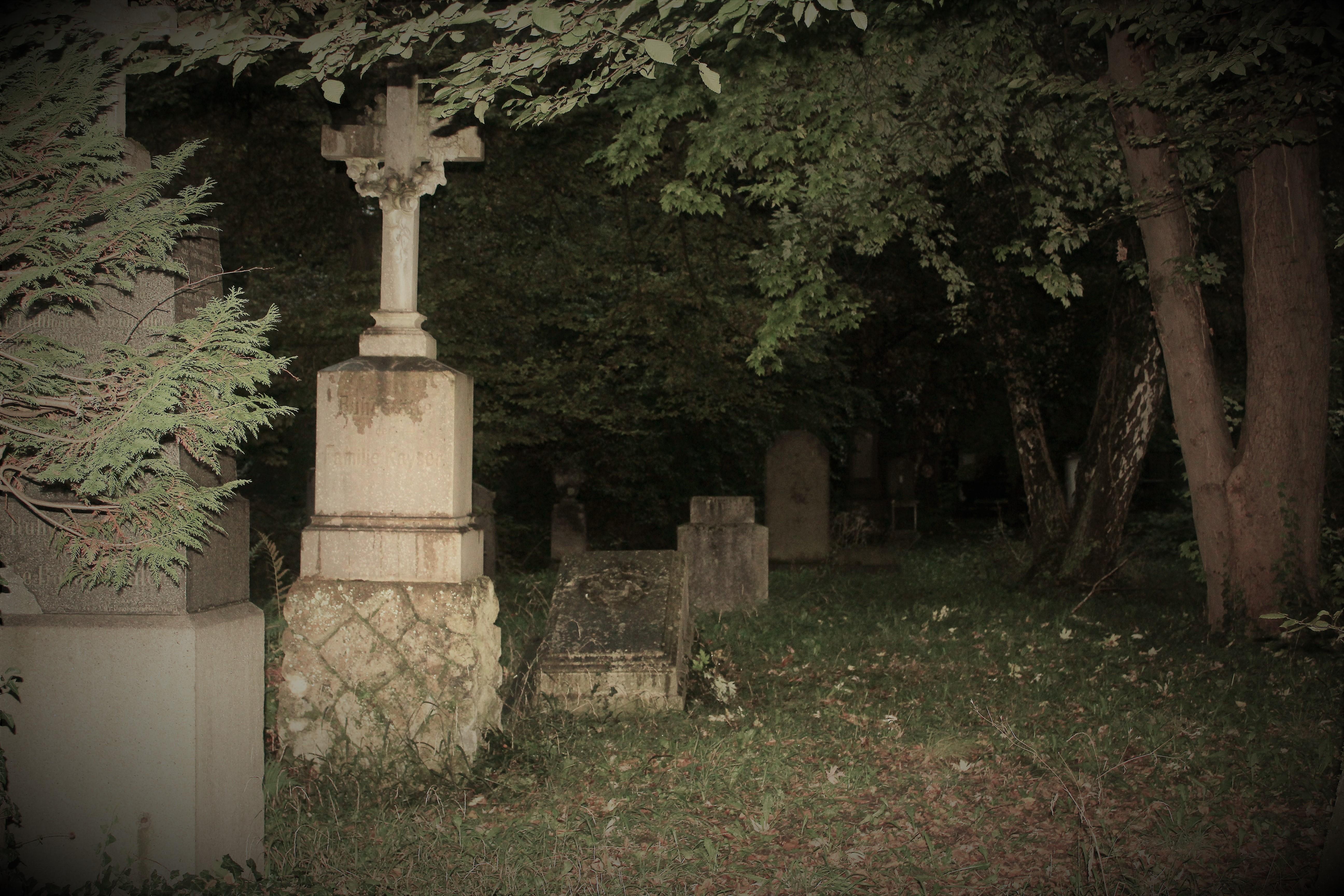 Er umfasst eine Fläche von ca. 10 ha und ist in einen alten und einen neuen Teil gegliedert, der sich durch die Ausrichtung der Grabreihen unterscheidet.