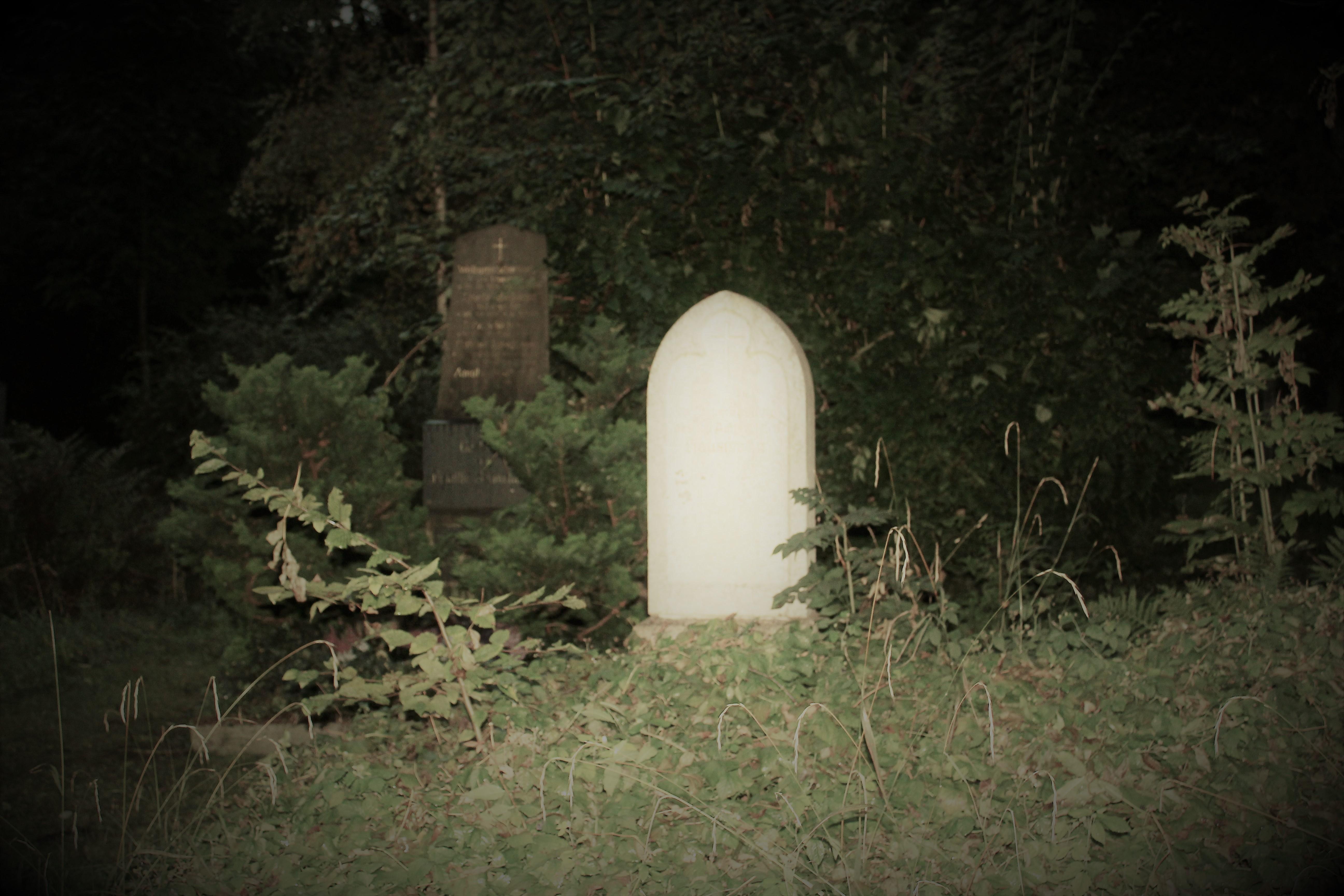 Im alten Teil des Friedhofs befinden sich über 13.000 Gräber und 95 Grüfte.