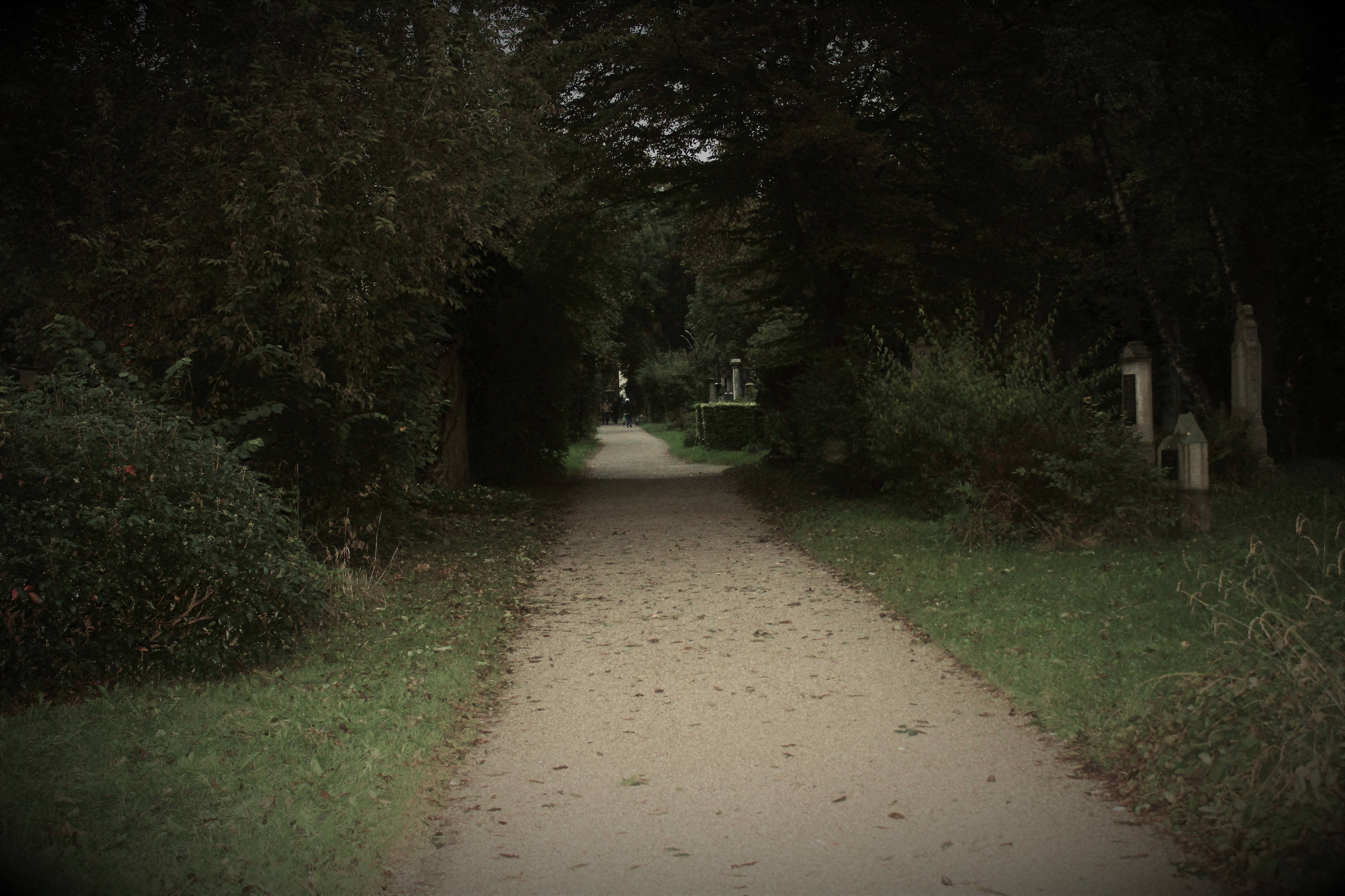 Seit dem 31. Dezember 1943 ist der Alte Südliche Friedhof ein aufgelassener Friedhof, das heißt, er ist zwar für Bestattungen gesperrt, untersteht jedoch den Städtischen Friedhöfen München und ist damit weiterhin Friedhof und kein Park.
